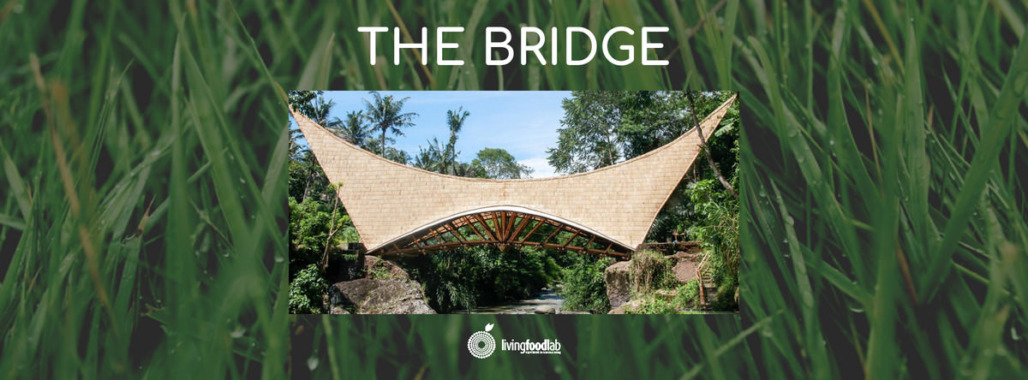 the-bridge-green-school